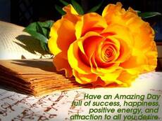 Have An Amazing Day